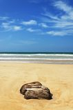 Stones in the waves on ocean coast Stock Photos