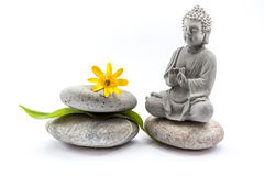 Stones whit flower and Buddha Stock Image