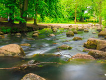 Stones in woods forest. stream in gdansk oliva park. Stock Images