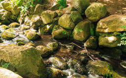 Stones in woods forest. stream in gdansk oliva park. Stock Image