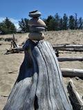 Stonestack stenkonst vaggar strandDriftwwood detaljer, träd somfilialen rotar Royaltyfri Fotografi