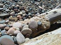 Stonestack stenkonst vaggar strandDriftwwood detaljer, träd somfilialen rotar Royaltyfri Bild
