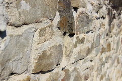 stonewall Fotografia Royalty Free