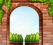 Stonewall e as plantas decorativas Imagens de Stock Royalty Free