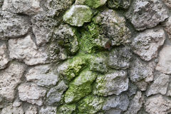 Stonewall with moss Stock Photography