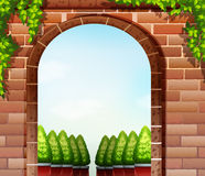 Stonewall och de dekorativa växterna Royaltyfria Bilder