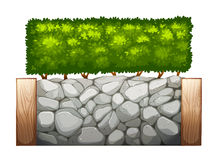 A stonewall with plants. Illustration of a stonewall with plants on a white background Royalty Free Stock Photography