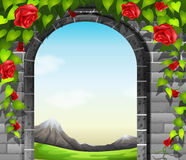 A stonewall with roses Royalty Free Stock Photo