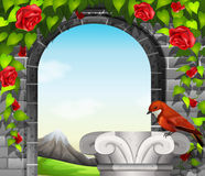 A stonewall with roses and a bird. A stonewall with roses and a red bird Stock Image