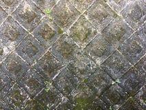 Stonewall. Stone wall rock moss Royalty Free Stock Photo