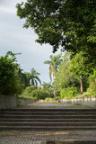 Stoneway al giardino Fotografia Stock