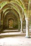 stonework аббатства старый Стоковое фото RF