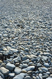 Stoney beach Royalty Free Stock Photos