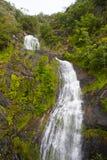Stoney Creek Falls Fotografia Stock