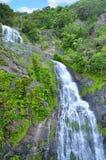 Stoney Creek Falls i Queensland Australien royaltyfria foton