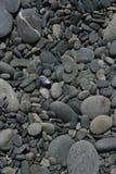 Stoney Shore Stock Photo