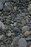Stoney Shore. Stones on the Washington shore Stock Photo