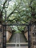 Stoney Stairs im Garten Lizenzfreies Stockfoto