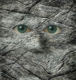 The stoney stare of a rock face Royalty Free Stock Images