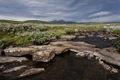 Stoney ström med berg i bakgrund Arkivbild