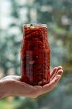 Stoni con molti pomodori rossi secchi, oliva e le spezie in mano del ` s dell'uomo con lo spazio della copia sulla fine vaga del  Fotografie Stock