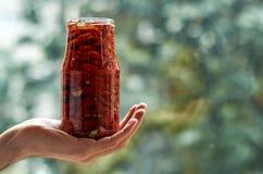 Stoni con molti pomodori rossi secchi, oliva e le spezie in mano del ` s dell'uomo con lo spazio della copia sulla fine vaga del  Fotografia Stock Libera da Diritti
