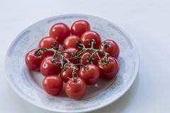 Stoning high-angle shot of some tiny cute tomatoes in a plate. C. Beautiful portrait of some pretty tiny tomatoes just picked from the garden. High-angle shot Royalty Free Stock Photo