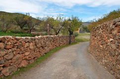 Stonned rural path. Stoned rural small road in Andalusia, Spain Royalty Free Stock Images
