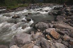 Stonny ondiepe rivier met vers en duidelijk water Royalty-vrije Stock Foto