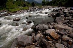 Stonny ondiepe rivier met vers en duidelijk water Stock Foto's