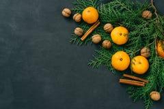 Stonowanego wizerunku eco bożych narodzeń składu nieociosani tangerines, dokrętki, cynamonowi kije i naturalny cyprys, rozgałęzia obrazy royalty free