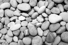 Stony background Stock Photography