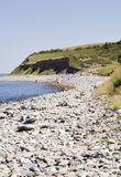 Stony beach Royalty Free Stock Photo
