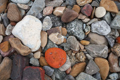 Stony beach Stock Images