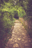 Stony bending path in the park. Royalty Free Stock Photo