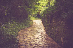 Stony bending path in the park. Stock Images