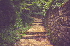 Stony bending path in the park. Stock Image