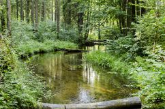 River Saidė flows in the Neris Regional Park in Lithuania. Stock Photo