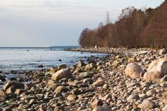 Stony coast of Baltic sea Royalty Free Stock Photo
