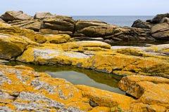 Stony coast at the Baltic Sea, Bornholm, Denmark. Yellow big stones yield an interesting color Royalty Free Stock Photography