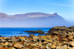 Stony coast of the fjord in the east of Iceland Royalty Free Stock Image