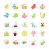 Stony Coral Reef Flat Icons vector illustration
