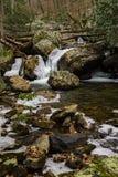 Stony Creek - 2 imagem de stock