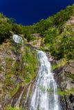 Stony Creek cai cachoeira, Kuranda, Queensland, Austrália fotografia de stock royalty free