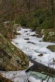 Stony Creek congelado fotografia de stock