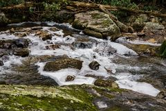 Stony Creek. Located below the Cascade Falls, Jefferson National Forest, Giles County, Virginia, USA stock photos