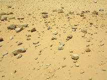 Stony desert Royalty Free Stock Photography