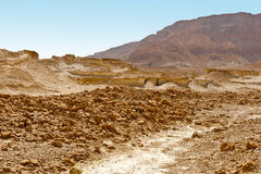 Stony Desert Stock Photography