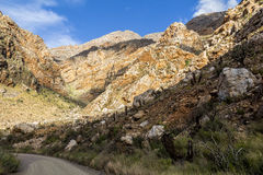Stony desert of Klein Karoo in South Africa Royalty Free Stock Photography