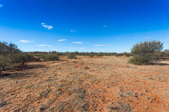 Stony desert in outback Australia. Stock Photos